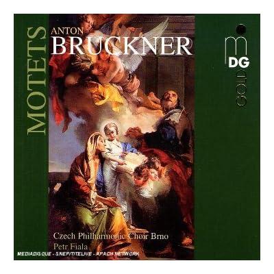 Bruckner - Musique sacrée 51QphLoy0zL._SS400_