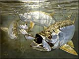 Tarpon and Mehhaden by Don Ray Tile Mural for Kitchen Backsplash Bathroom Wall Tile Mural