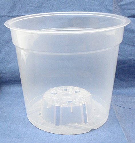 Clear Plastic Teku Pot for Orchids 6 inch Diameter - Quantity 1 (6 Plastic Pot compare prices)