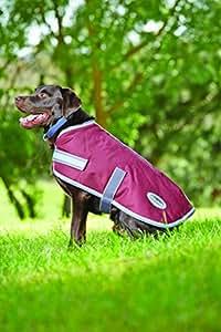 """Weatherbeeta Parka 1200D Dog Coat - 12"""" - Burgundy/grey 2 Tone"""