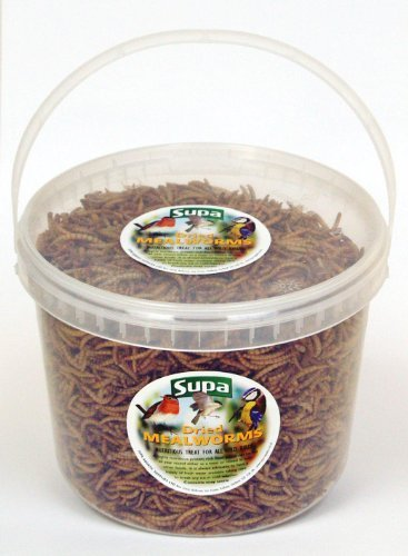 Wild-Bird-Dried-Mealworms-Bird-food-Meal-Worms-3000ml-3-Litre-Tub
