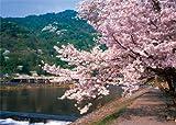 特選 四季の詩 1000スモールピース 渡月橋 -桜の架け橋- (38cm×53cm、対応パネルNo.5-B)