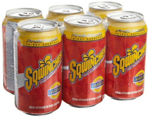 Sqwincher 100105-Fp 12 Oz Ready To Drink Can, Fruit Punch Flavor (Case Of 24)