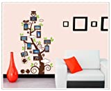 Good Life Picture Frames Tree with Leaves Owl Birds Removable Wall Decal Decor Sticker