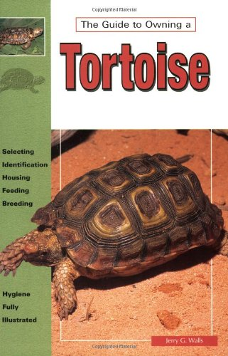 Tortoises, Natural History, Care
