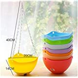 Sellify Yellow : Hang Basket For Bonsai Pot Hanging Backet Plant With Hook Bracketplant Flowerpot Multicolor Gardening...