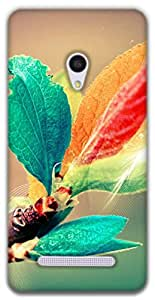 The Racoon Grip blooming branch hard plastic printed back case / cover for Asus Zenfone 5