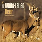 White-tailed Deer 2016 Calendar