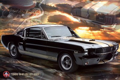 ford-shelby-mustang-66-gt350-maxi-poster-61cm-x-915cm
