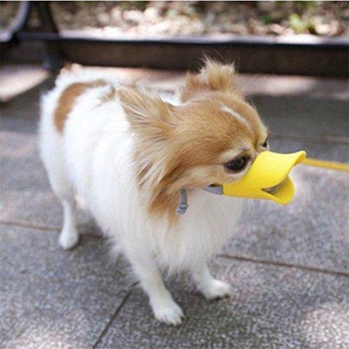 Duck Beak Muzzle
