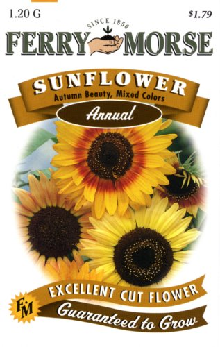 Ferry-Morse 1498 Sunflower Annual Flower Seeds, Autumn Beauty Mixed Colors (1.2 Gram Packet)