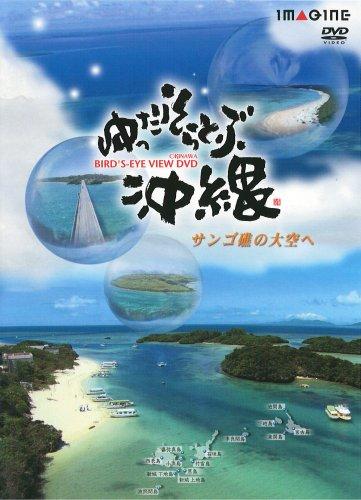 ゆったりそらとぶ沖縄 サンゴ礁の大空へ [DVD]