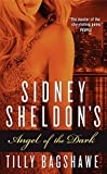 img - for Sidney Sheldon's Angel of the Dark book / textbook / text book