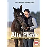 Alte Pferde: Artgerechte Haltung, Pflege und Bewegung