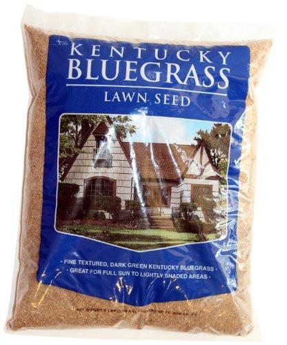 Mountain View Seed 17650 Horizon Economy 3-Way Kentucky Bluegrass, 3-Pound