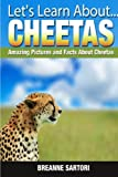 Cheetahs (Let s Learn About )
