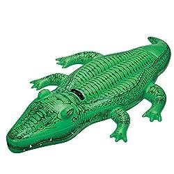 Lil Gator On Ride