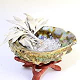 スマッジング・セットー(カリブ海のアバロンシェルの貝殻、ワイルドホワイトセージ、ヒマラヤさざれ石、木製コブラスタンド)、セージ浄化、パワーストーン浄化用