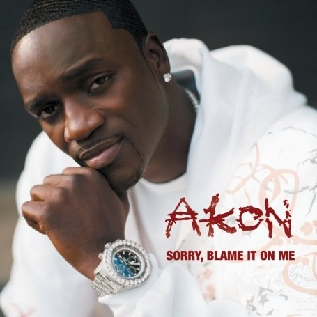 Akon - Sorry Blame It on Me - Zortam Music