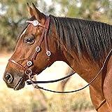 Nurtural Horse Elite Leather Western Bitless Bridle