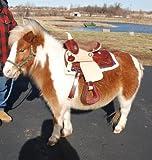 "Miniature Mini Horse Saddle 9"" Seat Very Fancy"