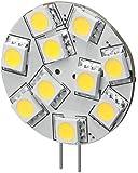 Goobay 30333 LED-Chip für G4 Lampensockel mit 10 SMD LEDs Leuchtfarbe tageslicht weiß
