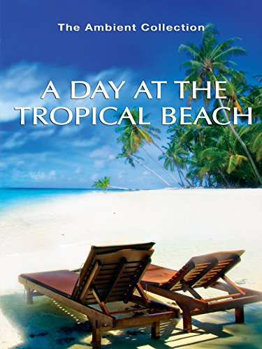 A Day At The Tropical Beach
