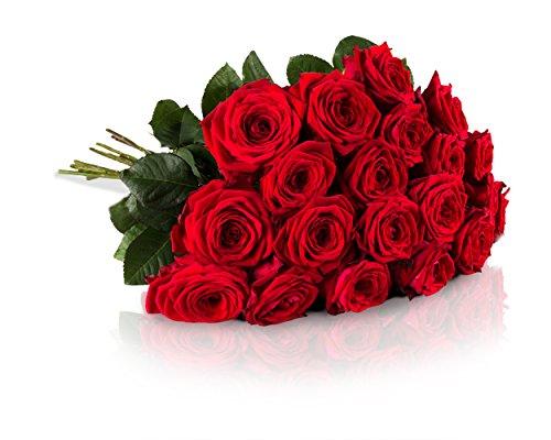 Highlights: • Impulsanter Blumenstrauß mit 20 Red Naomi Rosen - die Königin der Rosen mit extra großen Blütenköpfen• Designed von der MIFLORA Chef-Designerin und Europameisterin der Floristen, Nadine Weckardt, bekannt aus dem TV.• Extrafrische durch ...