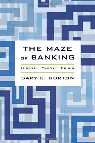 The Maze of Banking: History, Theory, Crisis