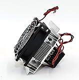 ペルチェ式 冷暖房ユニット 完成品 ペルチェ素子 DC12V 冷却ファン ユニット一式