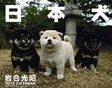 2012カレンダー 日本犬