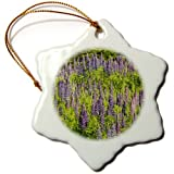 3dRose orn_91472_1 Minnesota, Near Silver Bay, Lupine Flowers US24 RSP0029 Rob Sheppard Snowflake Hanging Ornament, 3-Inch, Porcelain