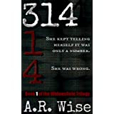314 (Widowsfield Trilogy) ~ A.R. Wise