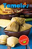 Tamales: Exquisite recipes from Mexico with Love