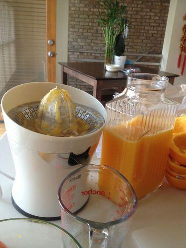 Tribest CS 1000 Citristar Citrus Juicer