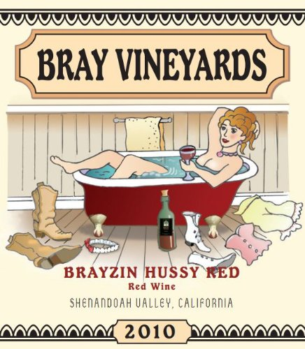 2010 Bray Vineyards Brayzin Hussy Red Shenandoah Valley California 750 Ml