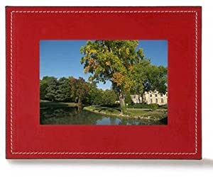 Parrot 7-Inch Digital Photo Frame (Red)