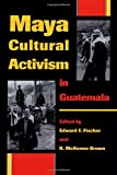 img - for Maya Cultural Activism in Guatemala (Critical Reflections on Latin America Series) book / textbook / text book