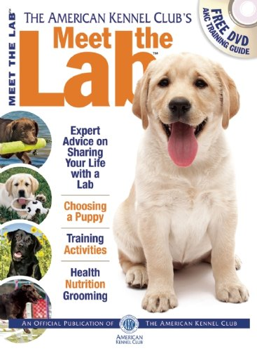 Meet the Lab (AKC Meet the Breed Series)