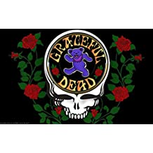 Posterhouzz Music Grateful Dead Band (Music) United States HD Wall Poster