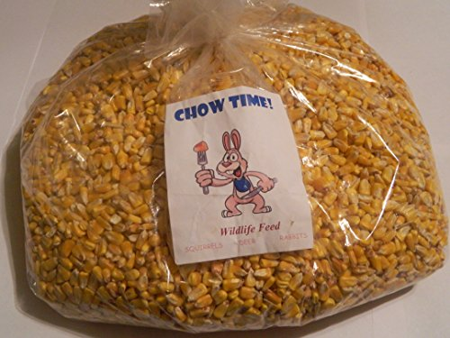 Chow Time! Squirrel Corn (Corn Chow compare prices)