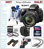 Sony DSLRSLTA55VHZ