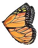 Orange Monarch Wings
