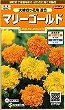 サカタのタネ 実咲花7620 マリーゴールド大輪切り花用混合 00907620