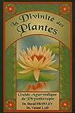 La Divinité des plantes : Guide Ayurvédique de phytothérapie