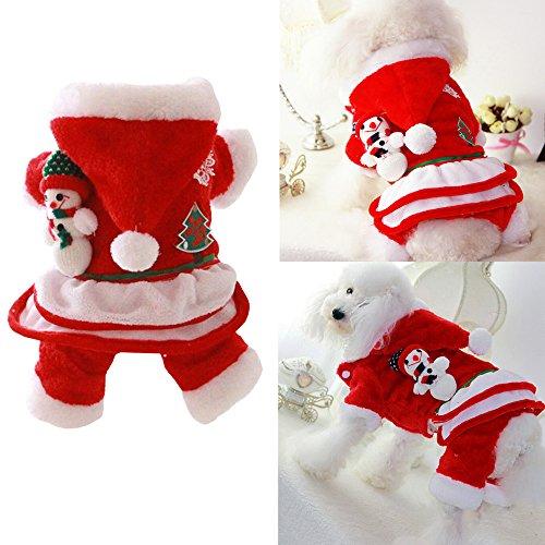 Bolbo (Dog Christmas Outfit)