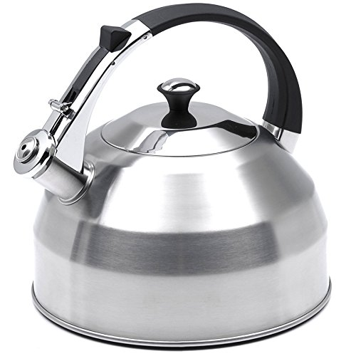 Evco International Creative Home Panorama Stainless Steel Tea Kettle, 3.7 quart, Silver