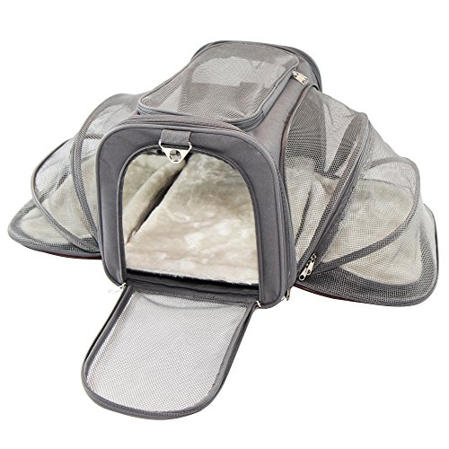 Jet Sitter Luxury Pet Carrier – Airline Size, Soft Sided Foldable and Spacious, Improved Design with Seat Belt Buckles, Mesh Stretch Pocket, Velcro Comfort Handle (18″x11″x11″, Dark Gray)