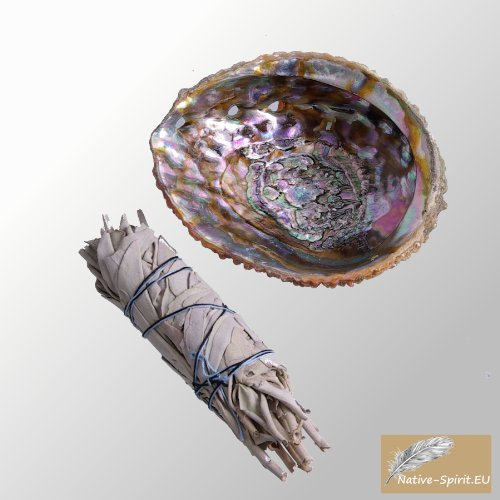 set-white-sage-middle-smudge-and-wounderfull-natural-inside-polished-abalone-shell-5-6inch-125-15-cm