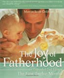 The Joy of Fatherhood: The First Twelve Months Expanded 2nd Edition